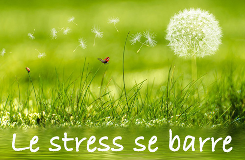 Le-stress-se-barre